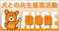orangedog_o_120x64.gif