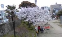 相川.jpg