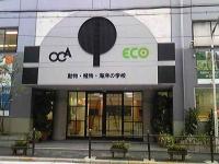 OCA.jpg