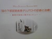 FLUTD.jpg