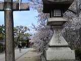 神社前.jpg