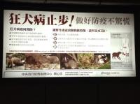 狂犬病広告.JPG