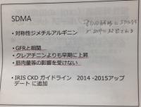SDMA追加.JPG