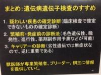 検査.JPG