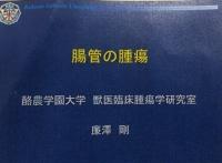 腸管腫瘍.JPG