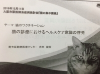 猫のワクチン.JPG