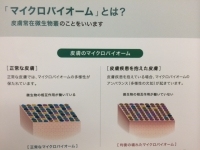 マイクロ.JPG