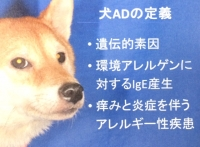AD定義.JPG