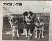 飼い方編.JPG