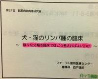 リンパ腫分類.JPG