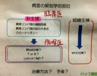 細胞診と生研.JPG