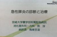 急性膵炎.JPG