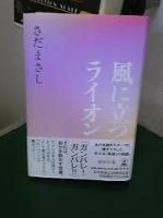 小説.png